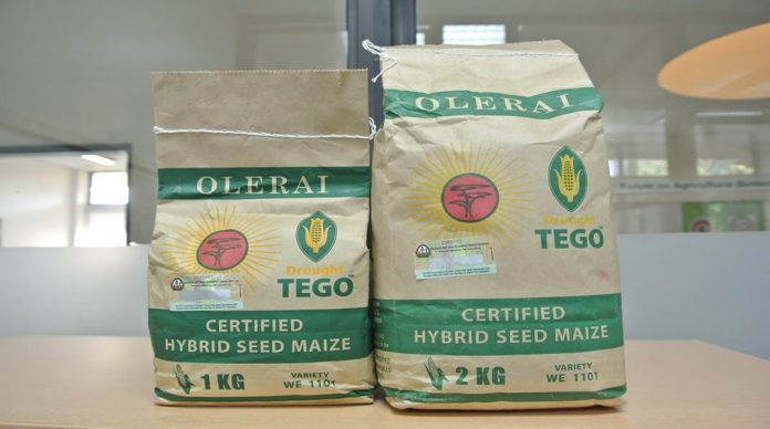 Impact-of-DroughtTEGO-hybrid-maize-variety-on-agricultural-productivity-and-poverty-alleviation-in-Kenya