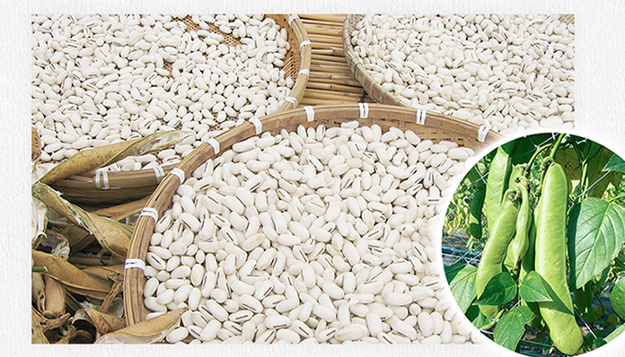 Effect of roasting on the nutritional and anti-nutritional properties of Jackbean (Canavalia ensiformis)